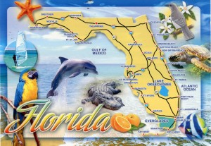 Florida festivals this summer 2014