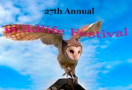 Wildlife festival in Lewiston New York