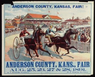 2016 Anderson County Fair image