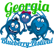 Georgia Blueberry Festival 2015 Alma Georgia